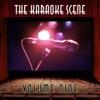 The Karaoke Scene, Vol. 9, The Professionals