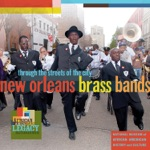 The Tremè Brass Band - Give Me My Money Back
