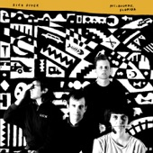 Dick Diver - Year in Pictures