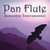 Romantic Instrumental Hits