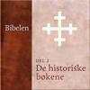 N. N. - De historiske bøkene (Bibelen 2) artwork