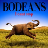 BoDeans - Roll with the Punches