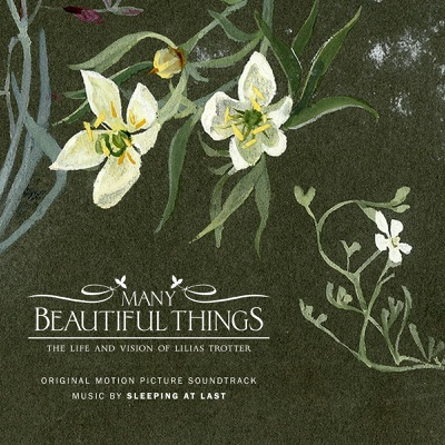 Many Beautiful Things (Original Motion Picture Soundtrack) - Sleeping At Last