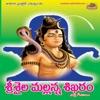 Srisaila Mallanna Shikaram