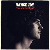 Vance Joy - Fire and the Flood