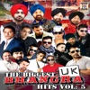 The Biggest UK Bhangra Hits, Vol. 5