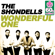 Wonderful One (Remastered) - The Shondells