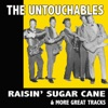 Raisin' Sugar Cane & More Great Tracks
