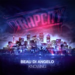 Beau Di Angelo - Knowing
