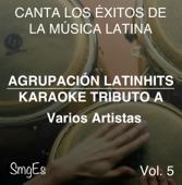 Instrumental Karaoke Series: Varios Artistas, Vol. 5 (Karaoke Version)