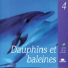 Dolphins Whales Dauphins et baleines