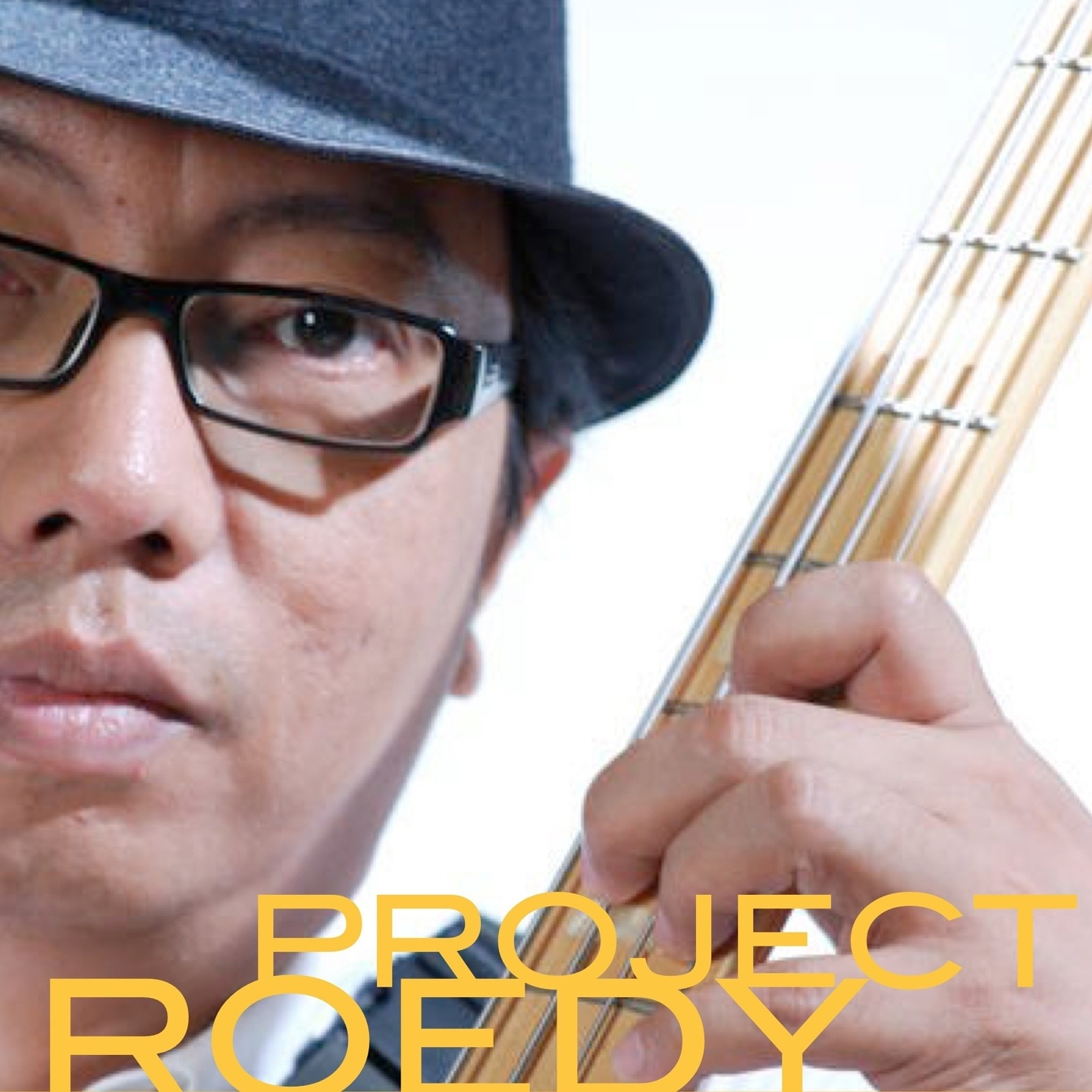 Roedy Project