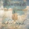 In the Arms of the Angel - Celtic Angels