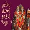 Kaliya Bhilni Kuldevi Chamunda Pt 1