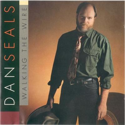 Walking the Wire - Dan Seals