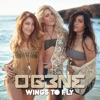 Icon Wings To Fly - Single