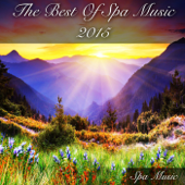 The Best Of 2015-Spa Music