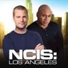 NCIS: Los Angeles, Season 7 - Synopsis and Reviews
