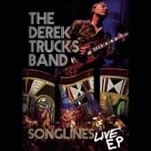 The Derek Trucks Band - this sky