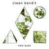 Stronger - Clean Bandit