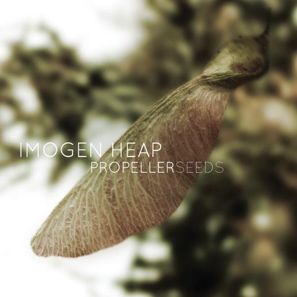 Propeller Seeds