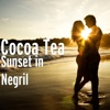 Sunset in Negril - Single ジャケット写真