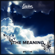 The Meaning - Envine