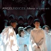 Libera/Robert Prizeman - Ave Maria
