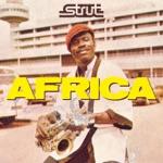 Strut Africa