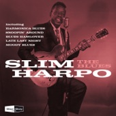 Slim Harpo - You'll Be Sorry One Day