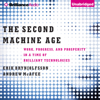 Erik Brynjolfsson & Andrew McAfee - The Second Machine Age: Work, Progress, And Prosperity in a Time of Brilliant Technologies (Unabridged)  artwork