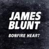 Start:01:46 - James Blunt - Bonfire Heart