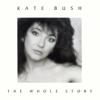 Cloudbusting - Kate Bush mp3