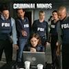Criminal Minds, Season 5 wiki, synopsis