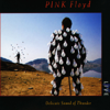 Delicate Sound of Thunder (Live) - Pink Floyd