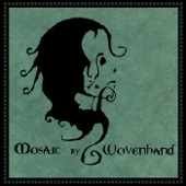 Wovenhand - Dirty Blue
