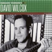 David Wilcox - Deeper Still