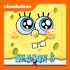 SpongeBob SquarePants, Season 5 wiki, synopsis