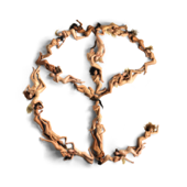 In My Room (feat. Ty Dolla $ign & Tyga) - Yellow Claw & Mustard