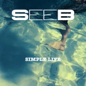 Simple Life - Single
