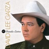 David Lee Garza - Ojo de Vidrio