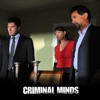 Criminal Minds, Season 6 wiki, synopsis