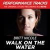 Walk On the Water (Performance Tracks) - EP, Britt Nicole