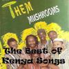 Them Mushrooms - Jambo Bwana  arte