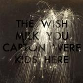 Wish You Were Here-The Milk Carton Kids