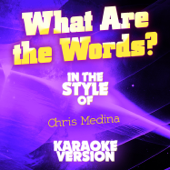 What Are the Words? (In the Style of Chris Medina) [Karaoke Version]