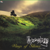 Wings of Silence - Lin Hai