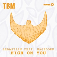 High On You (feat. Hagedorn) - Sebastien
