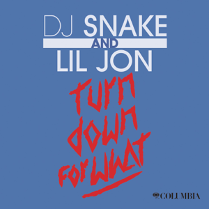 DJ Snake & Lil Jon - Turn Down for What