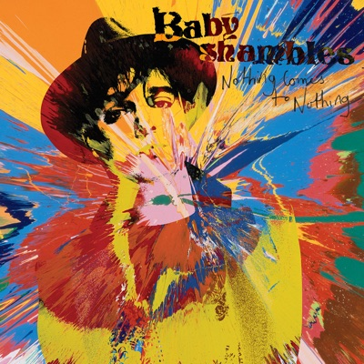 Nothing Comes To Nothing - Single - Babyshambles